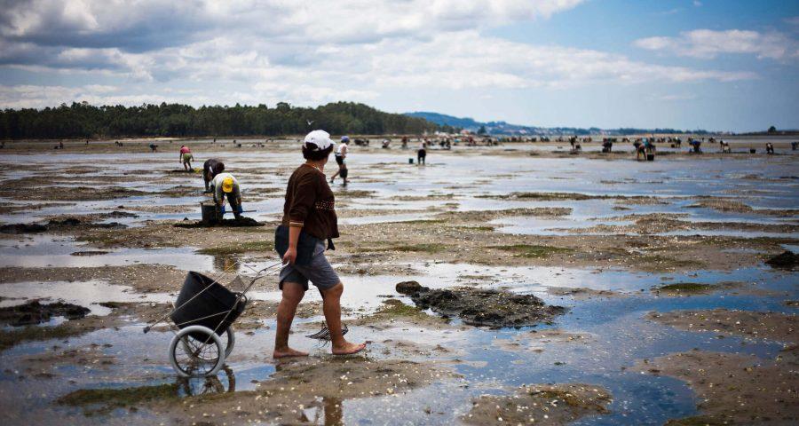 Turismo Marinero: Pueblos, Puertos Y Mar