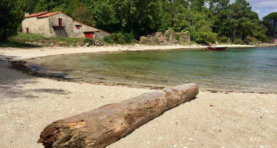 La Isla De Cortegada Y Su Bosque De Laurel