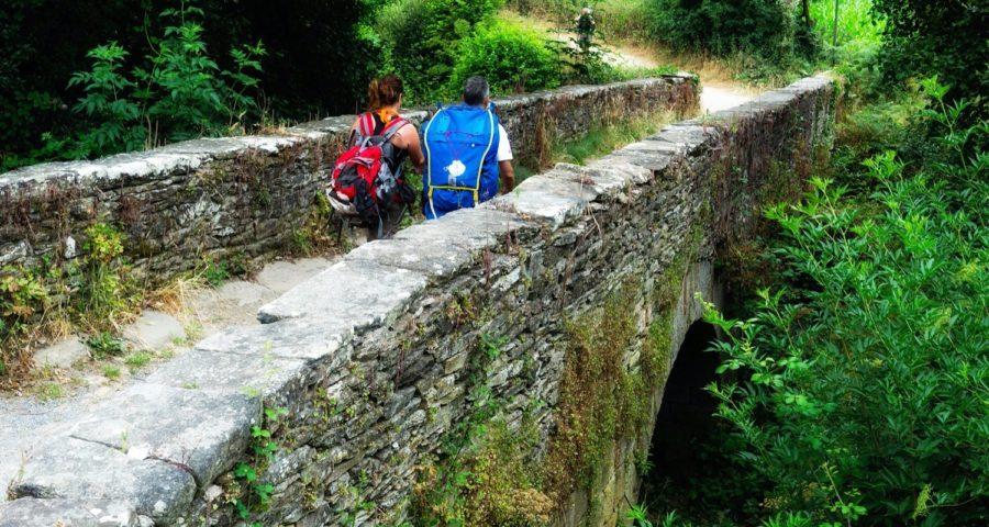 Guías Turísticos Acompañantes Guíate Galicia