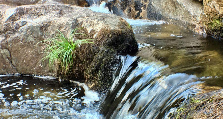 Las Pozas Del Río Almofrei